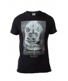 "Tee Shirt Rugby Division TOP 14  ""LION"" Noir"